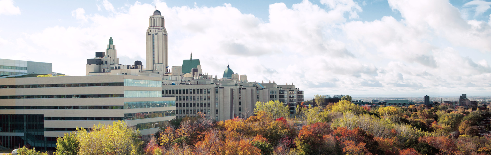 Go to the University of Montreal